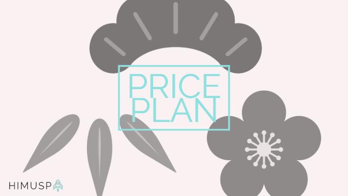 priceplan (4)